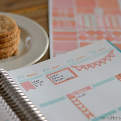 More DIY Erin Condren Life Planner Stickers + Template