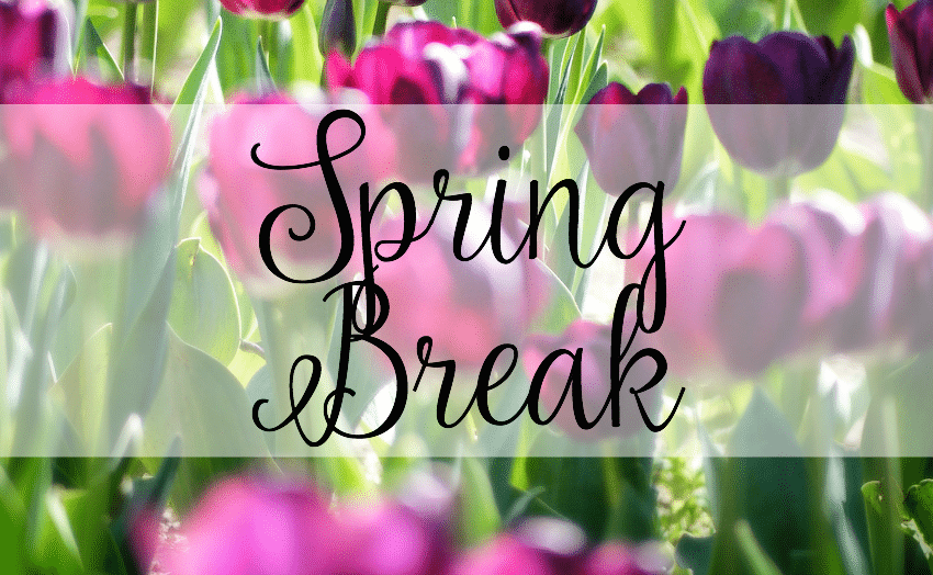 spring-breal