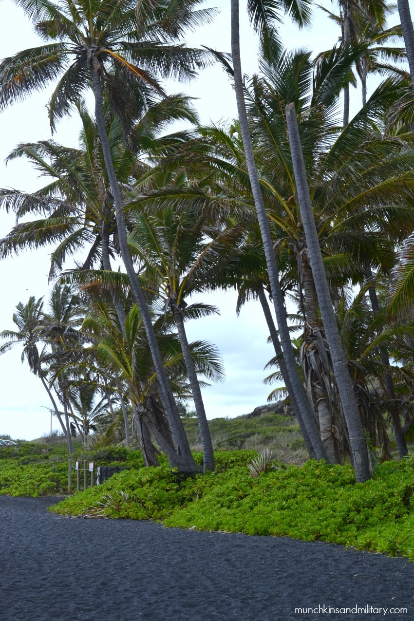 Big Island, Hawaii - Black sand beach