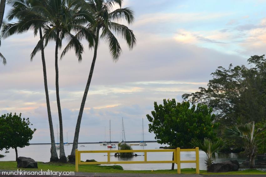 big-island-hotel-view