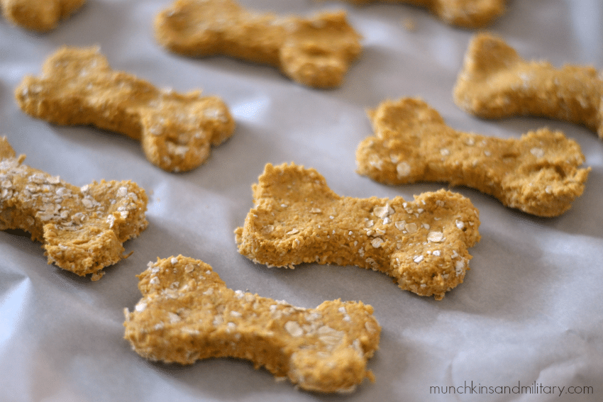 Pumpkin and apple dog treat recipe