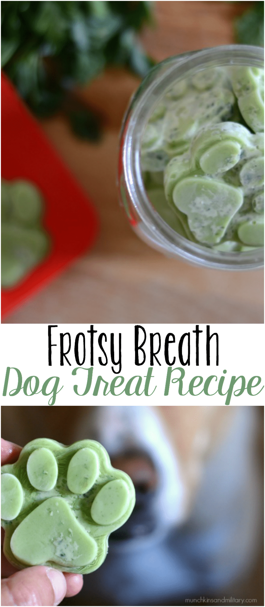 Frosty breath homemade dog treat recipe