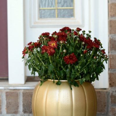 Faux Pumpkin Decor