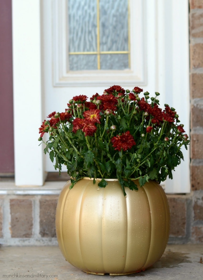 $1 jack-o-lantern trick or treat candy bucket spray painted gold and filled with mums for fall decor