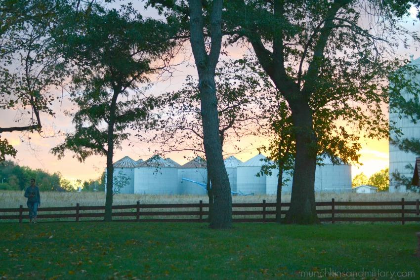 Springfield, Illinois sunset behind silos