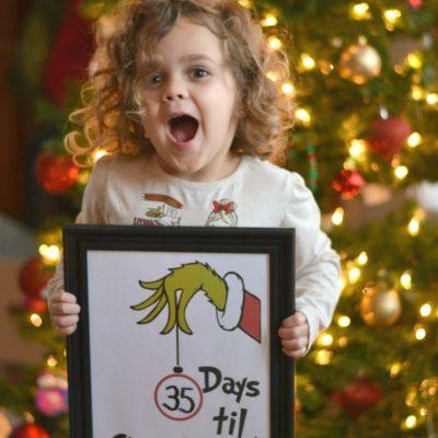 Countdown to Christmas + Grinch Printable