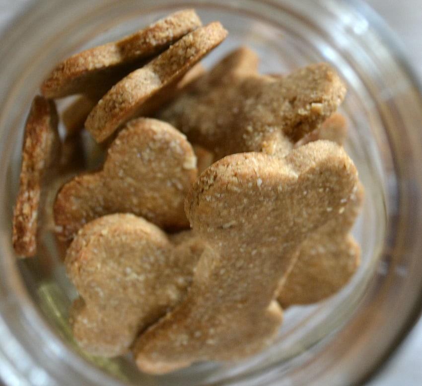 Dog Treats Oatmeal Recipes