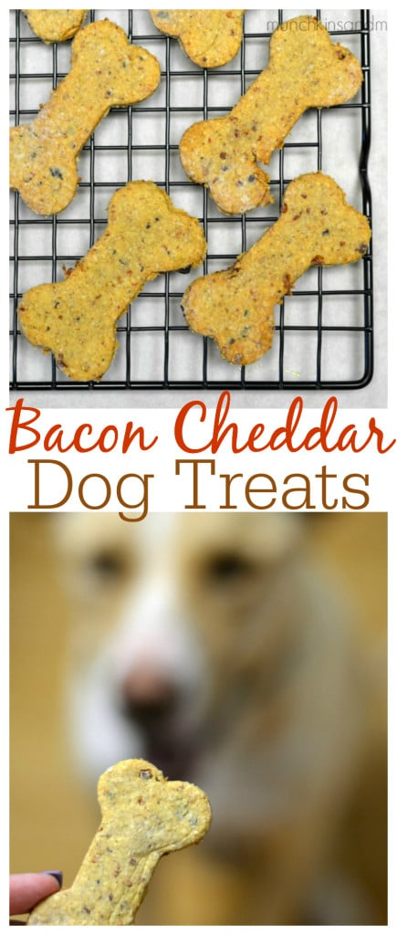 Cherry Dog Treat Recipe