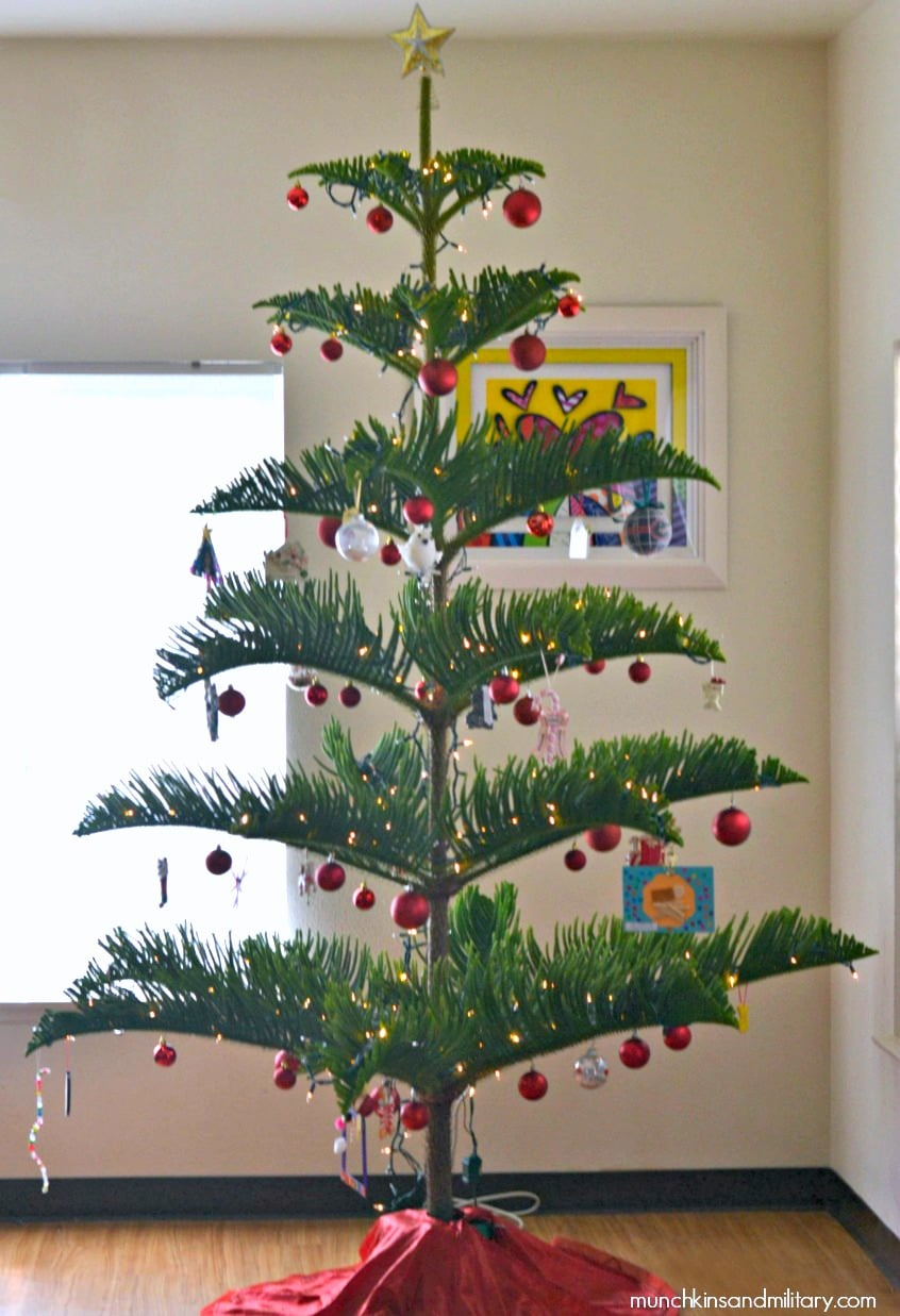 Today I'm linking up with Tea bunch Christmas Tree Lane as well as a bunch of other bloggers, to show off all of our Christmas trees!